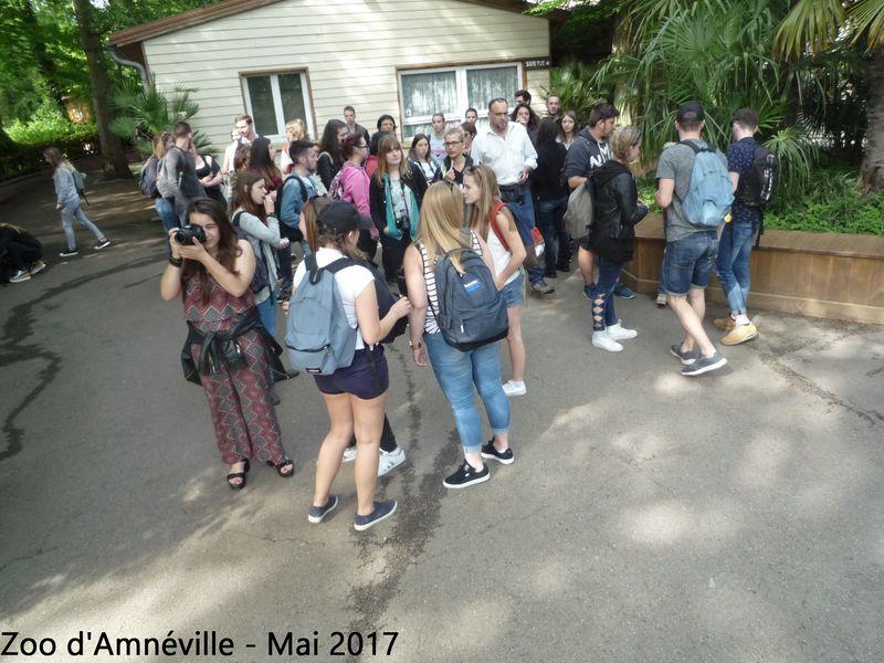 Visite du Zoo d'Amnéville pour les 5e et 6e ASA