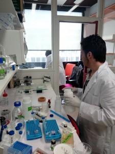 Erasmus chimie 2017 Pasteur